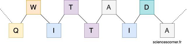 Schéma d'une chaîne d'acide aminé constituant une protéine.