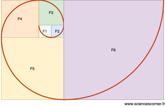 Spirale obtenue grâce à la suite de Fibonacci