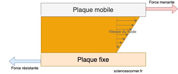 Mouvement laminaire de cisaillement modélisé pour expliquer la viscosité sur sciences corner